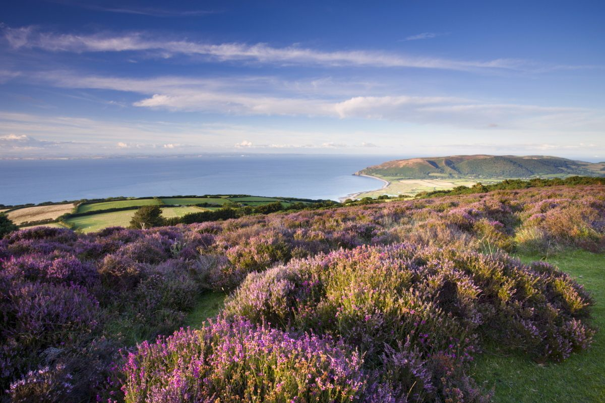 3 of the Best Driving Roads in Devon